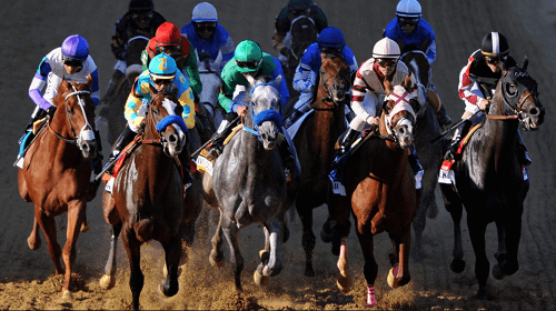 best belmont stakes betting odds CA