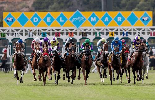 Del Mar Horse Entries CA