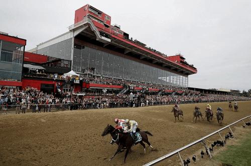 Pimlico Racecourse entries