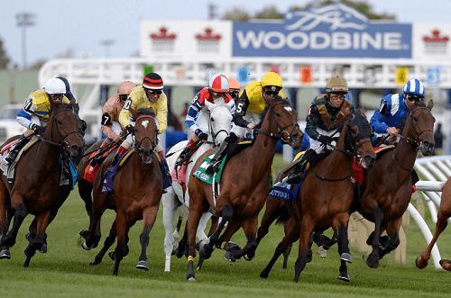 woodbine racetrack entries