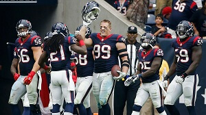 AFC South Division Houston Texans